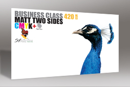 Luxury Cards Double sided (400gsm)